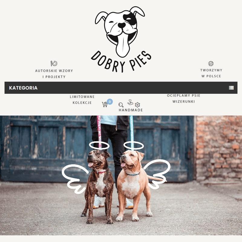 Designerskie obroże dla psów