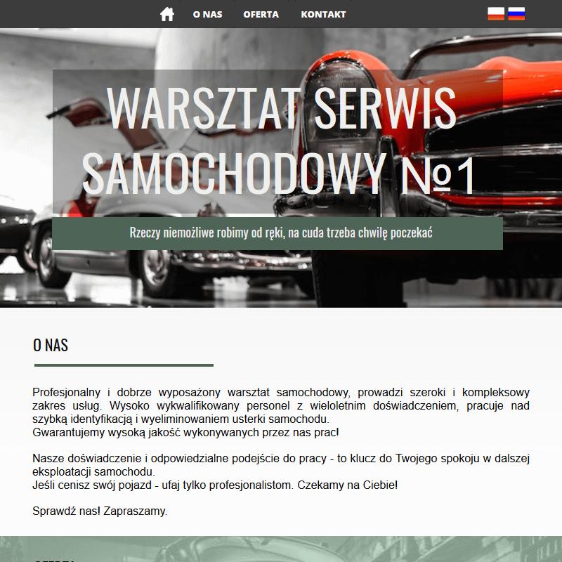 Elektronika samochodowa - Sulejówek